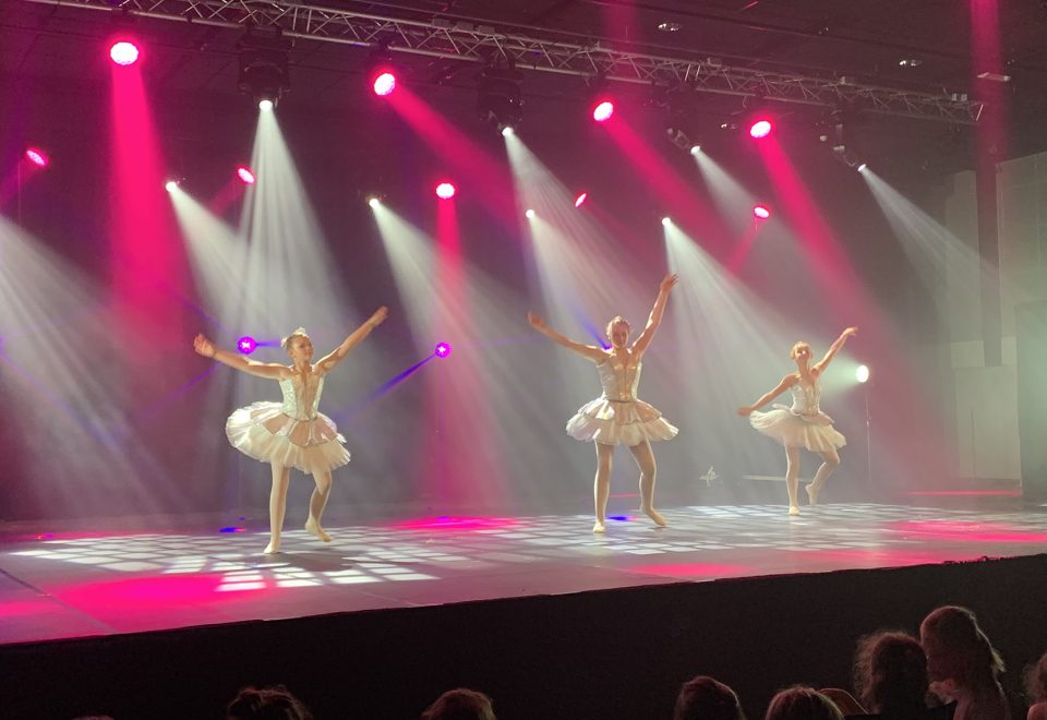 Art'is – dansshow 2019, Desselgem